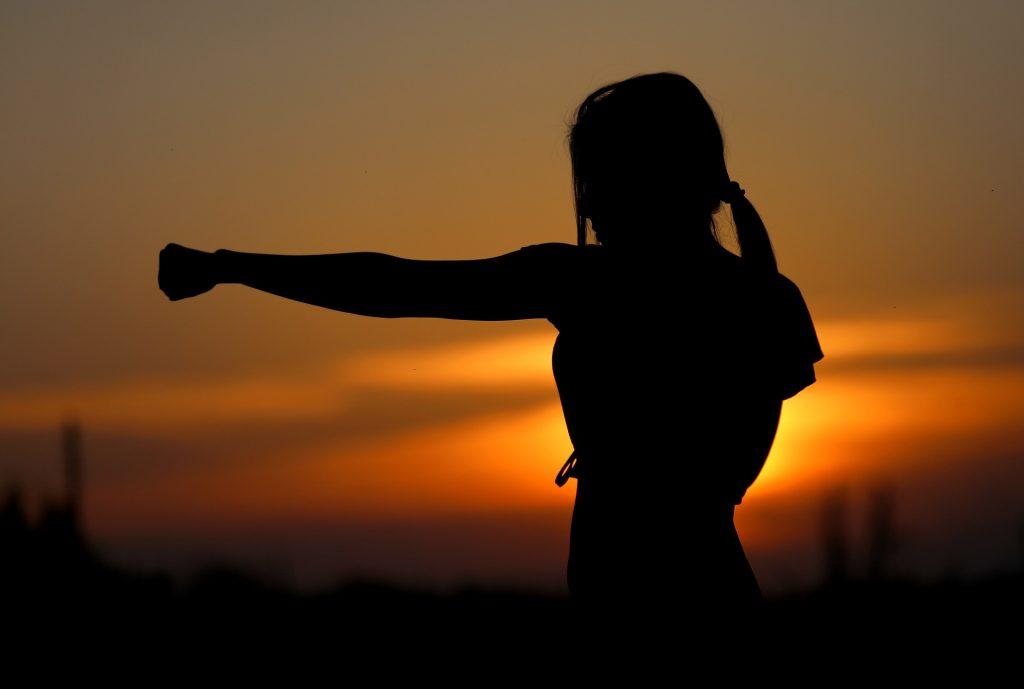 Obljetnica utemeljenja Karate kluba Pionirka
