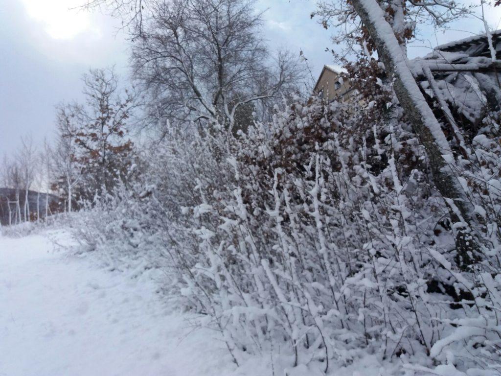 Snijeg zabijelio brdska područja Imotske krajine
