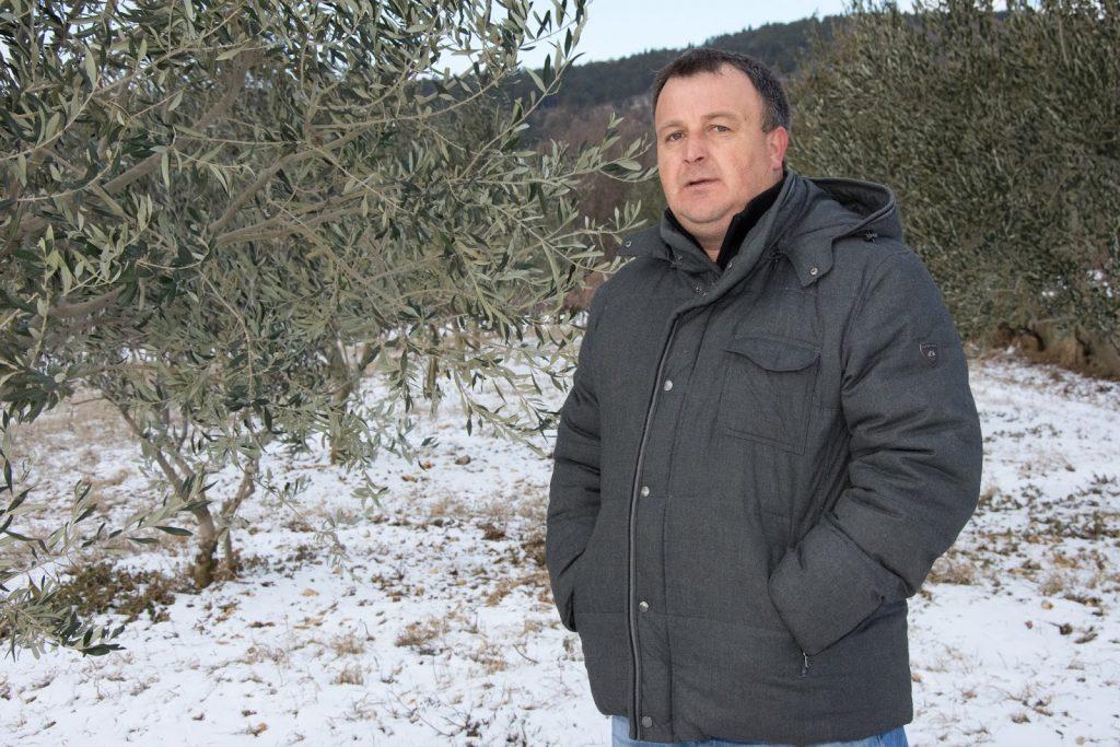 AUDIO: Gost u programu Radio Imotskoga bio je maslinar Bruno Rebić