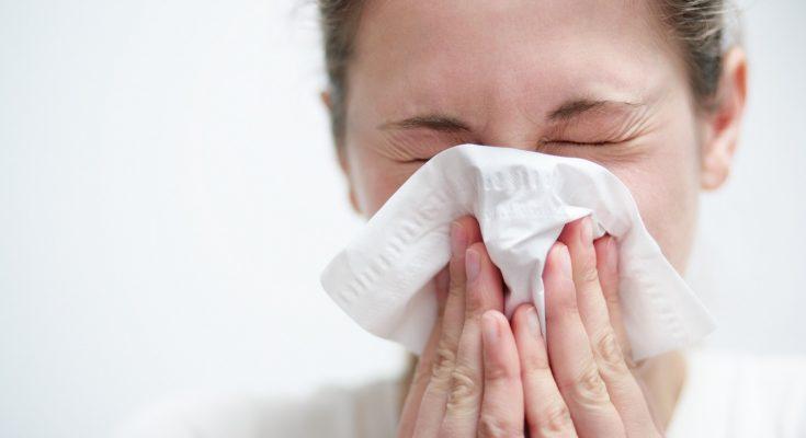 Jenjava gripa na području Imotske krajine