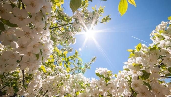 SAVRŠEN VIKEND Kraj tjedna uz obilje sunca i temperature do čak 23 stupnja, sljedeći tjedan novo zahlađenje