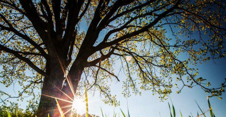 Idućih dana sunčano i sve toplije