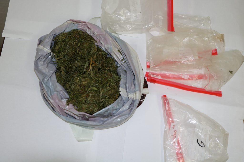 Zaplijenjena marihuana na imotskom području