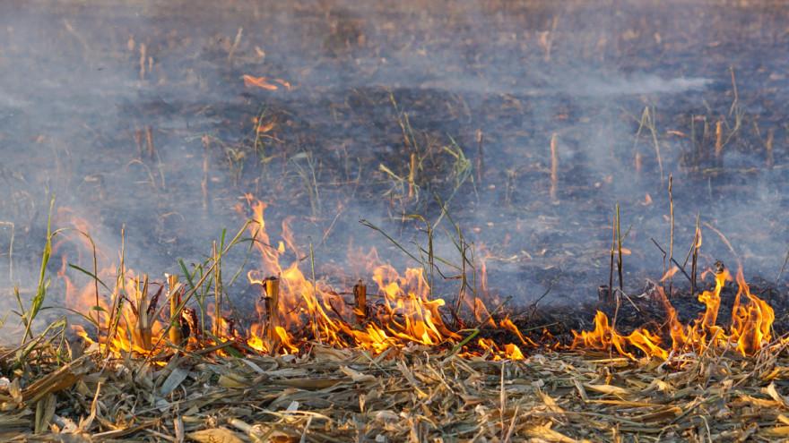 Ričice: Uslijed paljenja korova zadobio opekotine II. stupnja