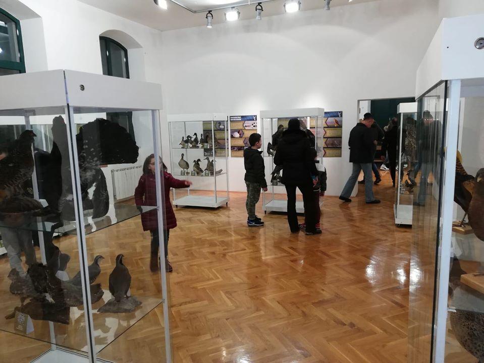 FOTO: Održana Noć muzeja u Zavičajnom muzeju Imotske krajine