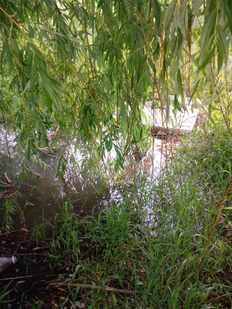 Kanalizacija se izlijeva u rijeku Vrljiku
