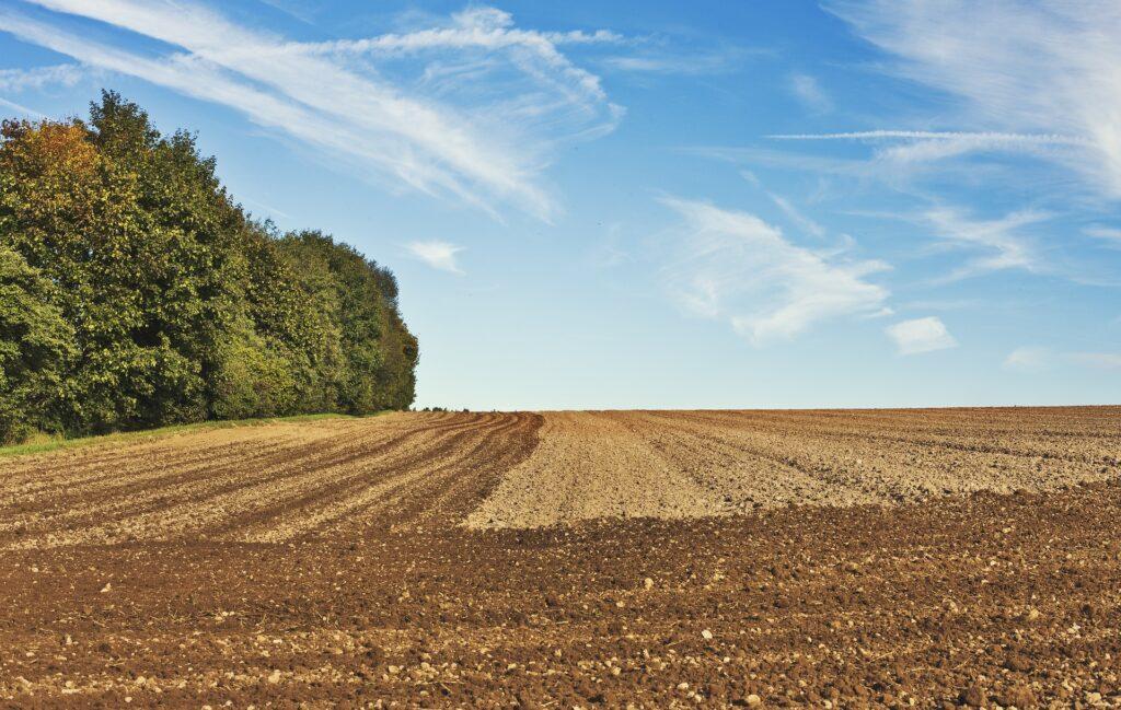 Javni poziv za podnošenje zahtjeva za dodjelu potpora iz Programa potpore poljoprivredi i ruralnom razvoju na području Grada Imotskog za 2021. godinu (za Mjeru 1.)